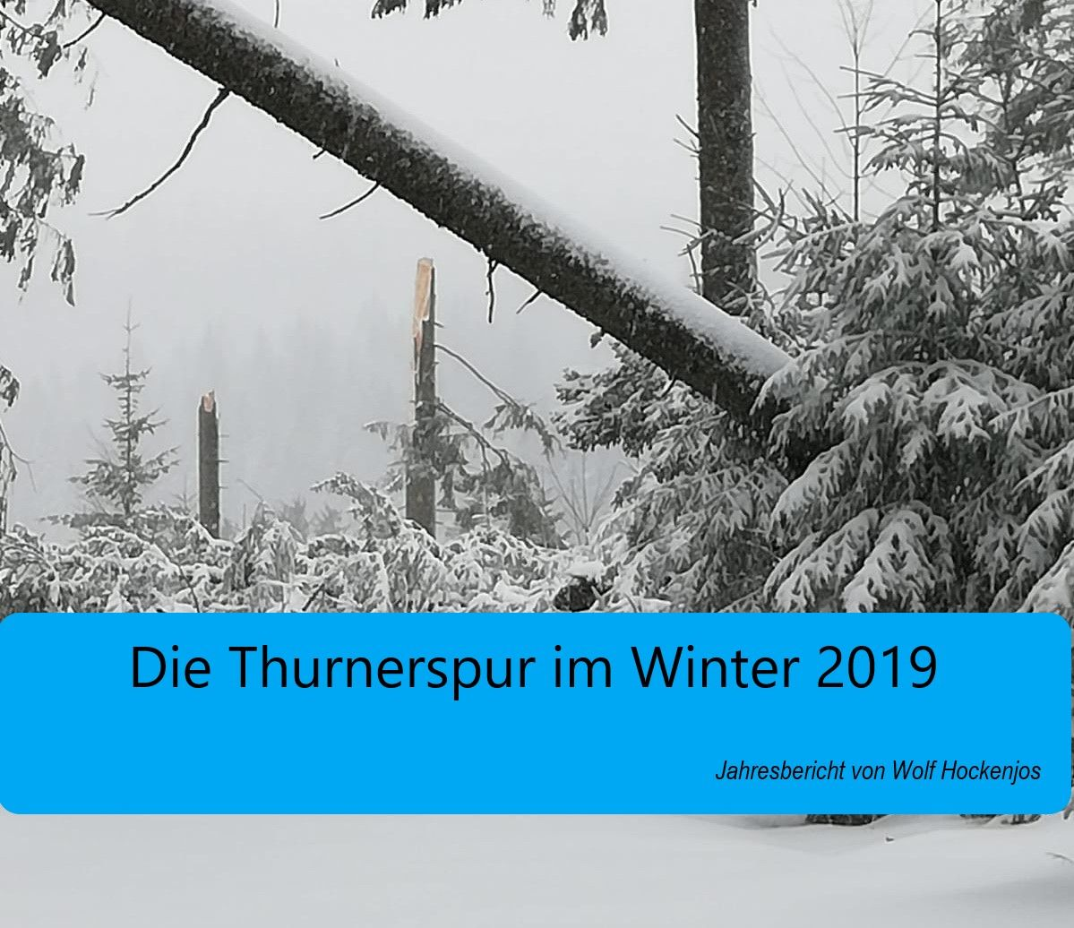 Die Thurnerspur im Winter 2019